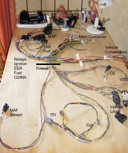 efi wiring harness wiring diagram specialtiesefi wiring harness modify question vintage mustang forumsefi wiring harness 11