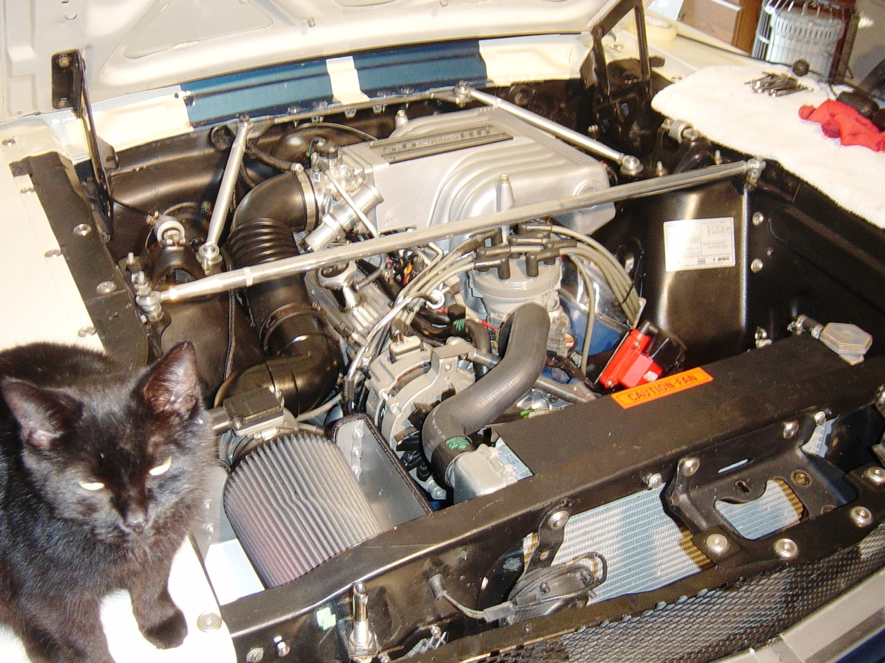 2011Mods3 68 coupe conversion from 289 2v to 89 5 0 efi vintage mustang forums Mustang LS Swap at gsmportal.co